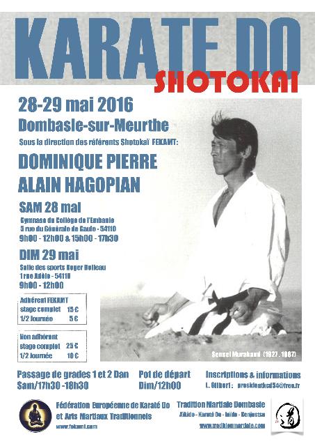 Stg-Shotokai-FEKAMT-28-29-mai-16